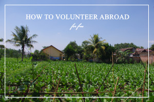 How to volunteer abroad for free