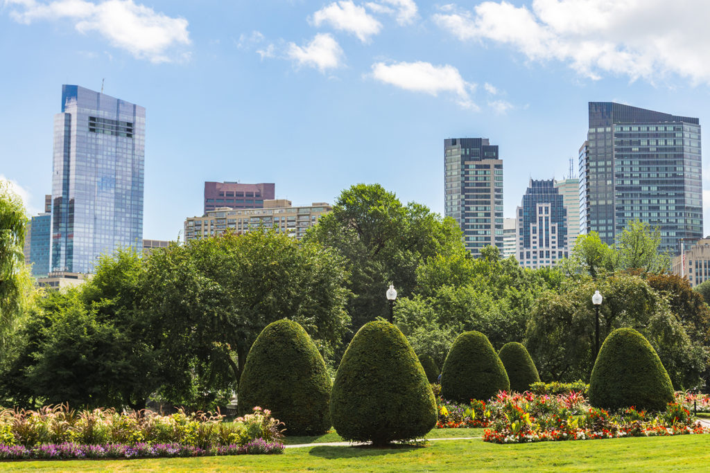 Explore Boston Common and Public Garden