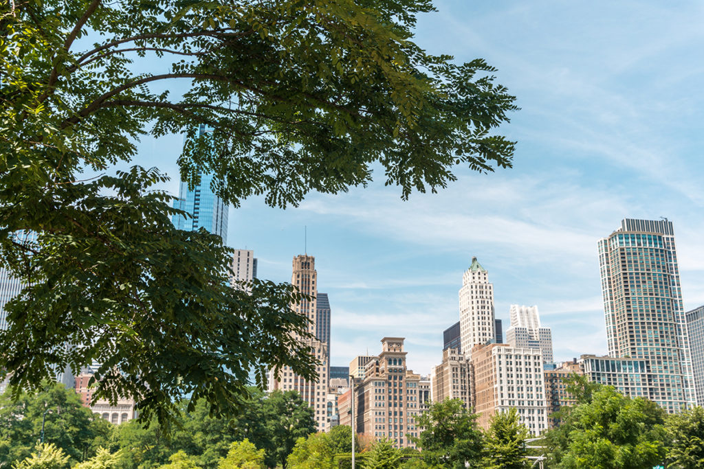 Check out Millennium Park, one of the best places in Chicago.
