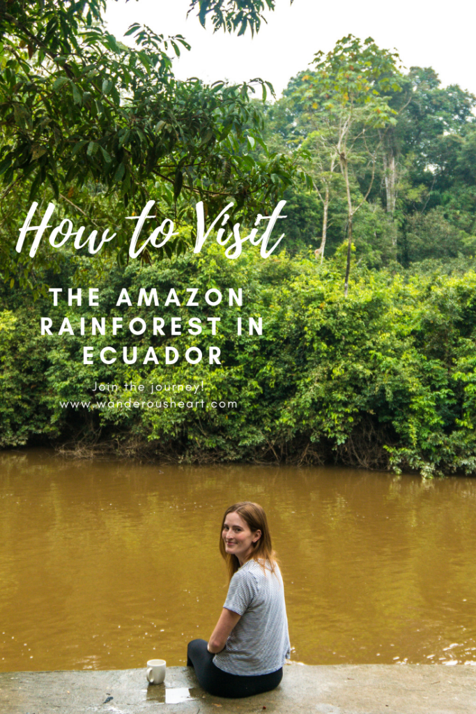 How to Visit the Amazon rainforest