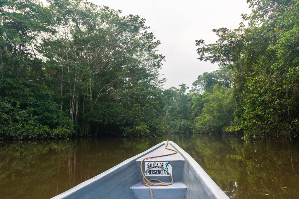 Boat in the Amazon Rainforest in Ecuador