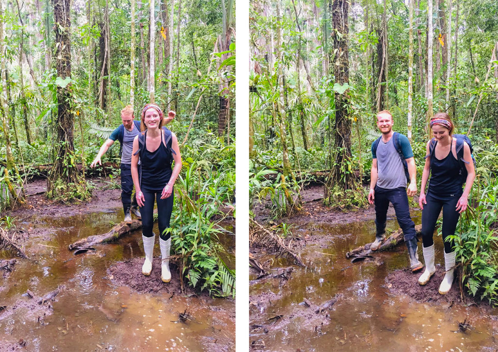 Walking through the swamps in the Rainforest