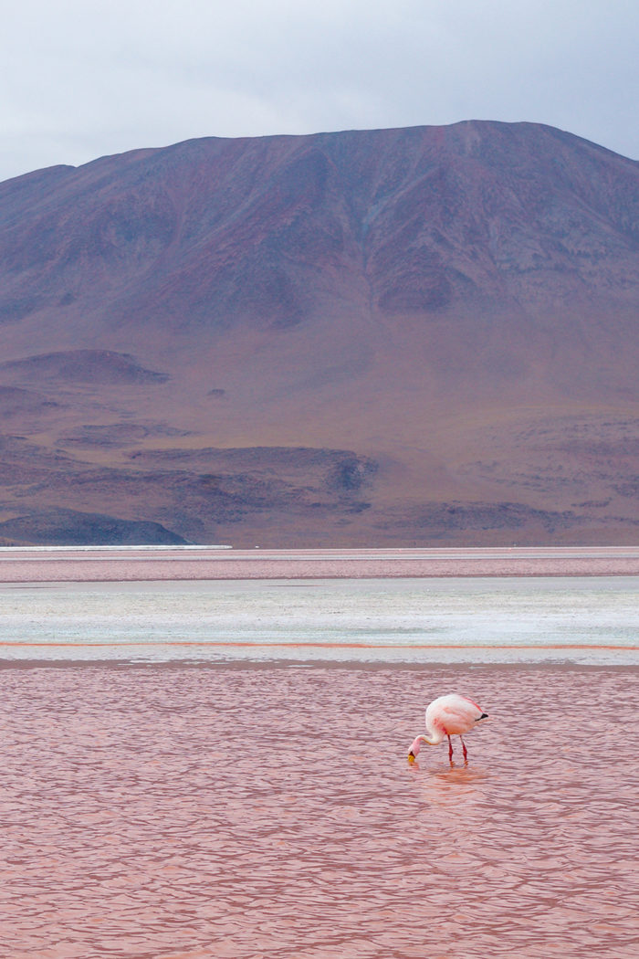 10 Places You Must Visit in Bolivia