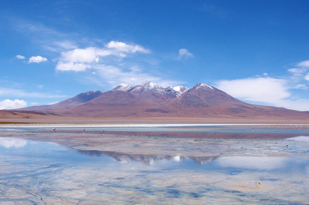 Explore the lakes of Sud Lipez