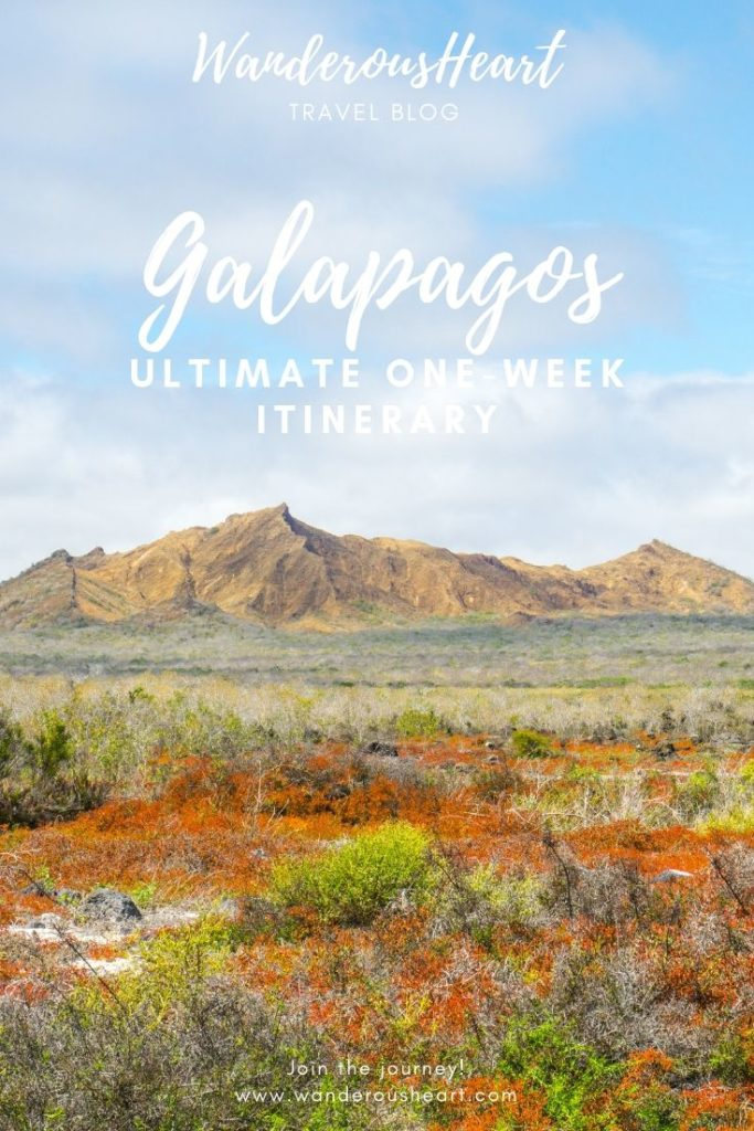 Galapagos One-Week Itinerary