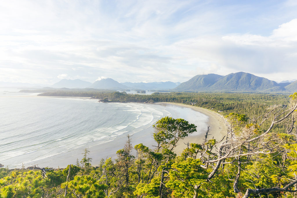 Hiking to the Cox Bay lookout is one of the best things to do in Tofino, British Columbia.