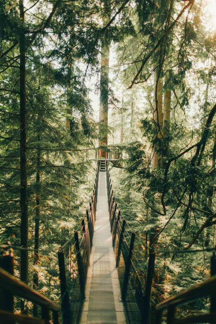11 Dreamy Airbnb Cabins Around Vancouver